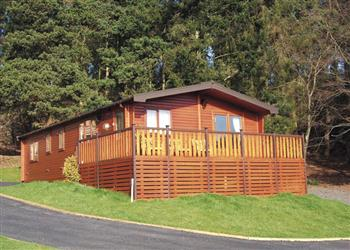 Relax and Explore Astbury Falls Lodges, Shropshire