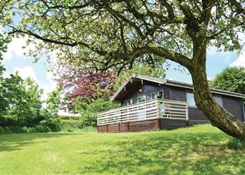 Oak Spa at Avallon Lodges in Launceston, Cornwall
