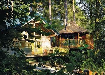 Golden Oak Hideaway