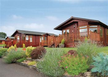 Relax and Explore Blossom Hill Lodges, Devon