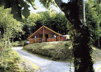 Bulworthy Forest Lodges, Bideford