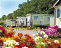 Enjoy the facilities at Dorset Sunset; Bridport