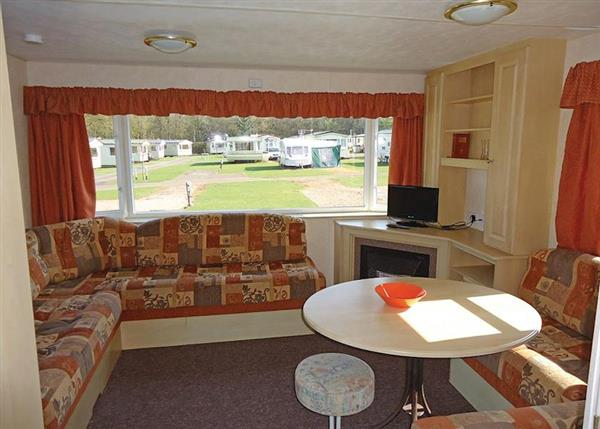 Relax and Explore Forest Glade Holiday Park, Devon