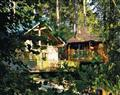 Enjoy your Hot Tub at Golden Oak 4; Winchester