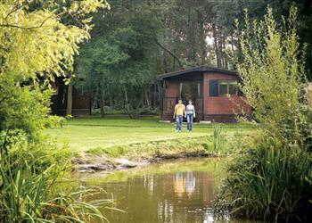 Relax and Explore Goose Wood Lodges, North Yorkshire