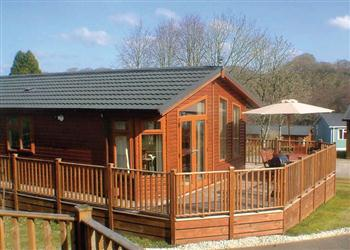 Relax and Explore Hilton Woods Lodges, Devon