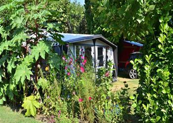 Le Paradis campsite - St Léon, Dordogne, France