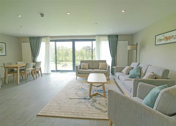Relax and Explore Old Thorns Apartments, Hampshire