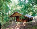 Penllwyn Alpine at Penllwyn Lodges in Montgomery - Powys