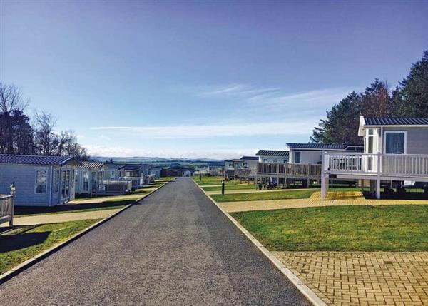 Relax and Explore Percy Wood Golf and Country Park, Northumberland