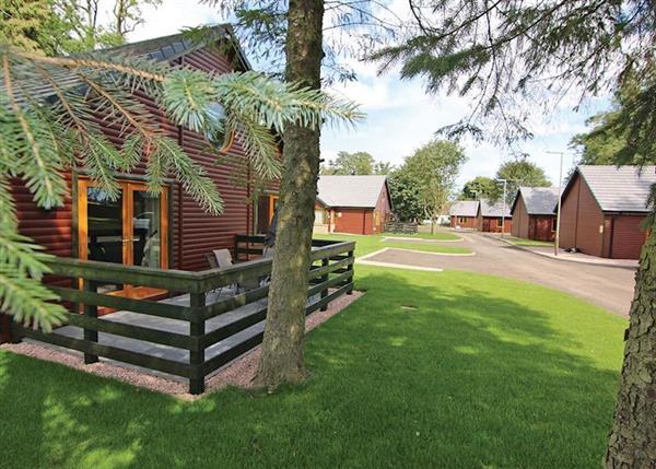 Lodge Escape St Andrews Forest Lodges, Fife