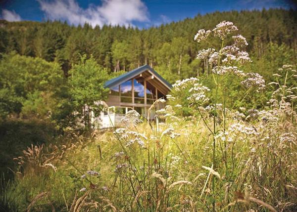 Lodge Escape Strathyre Forest, Perthshire