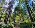 The Alwalton at Landal Rockingham Forest in Peterborough - Wansford