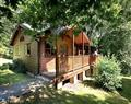 Violet Lodge at Woodland Lodges in Carmarthen - Carmarthenshire