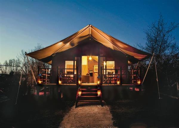 Bouja Waterside Safari Tents, Dorset