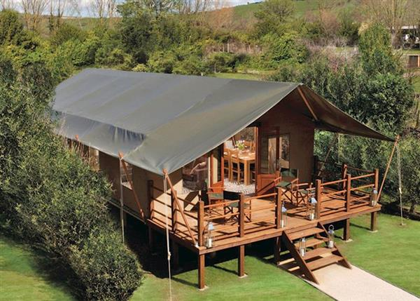 Safari Tent 3 in