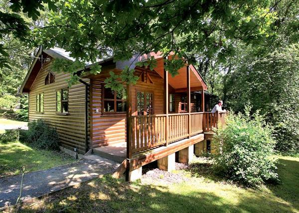Lodge Escape Woodland Lodges, Dyfed