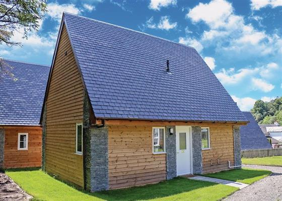 Balmaha WF (sleeps 3) (Pet) at Balmaha Lodges, Glasgow