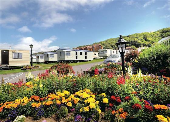 Beachside Lapwing Plus at Beachside Holiday Park, Bideford