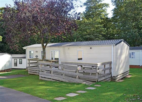 Beech Caravan WF at Oakcliff Holiday Park, Dawlish