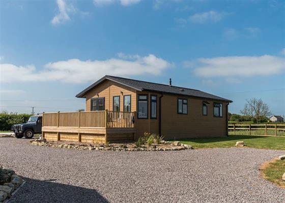 Beech Lodge at New Oaks Farm Lodges, Somerton