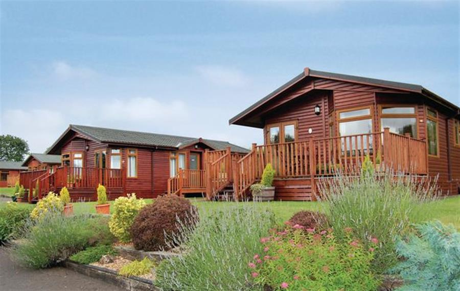 Blossom Hill Lodges