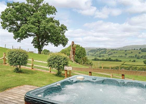 Bluebell Lodge at Trewythen Lodges, Llandinam