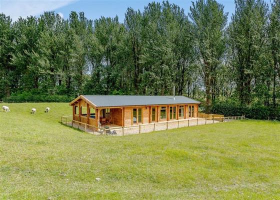 Bluebell Ridge at Peckmoor Farm Lodges, Crewkerne