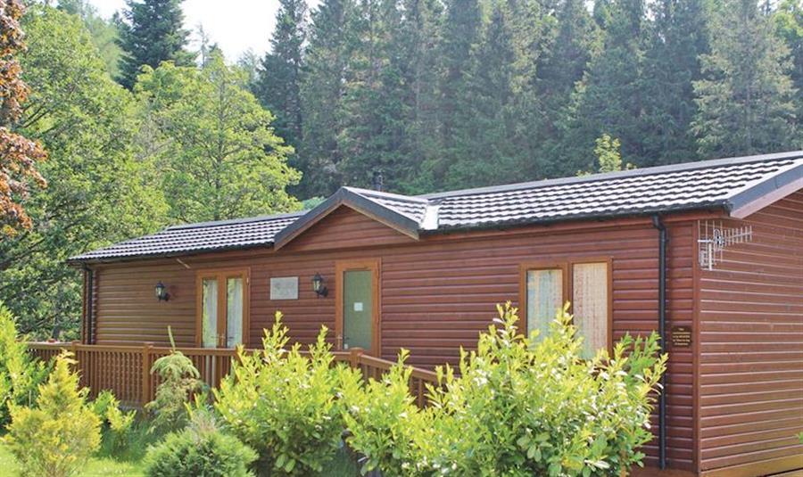 Border Forest Lodges