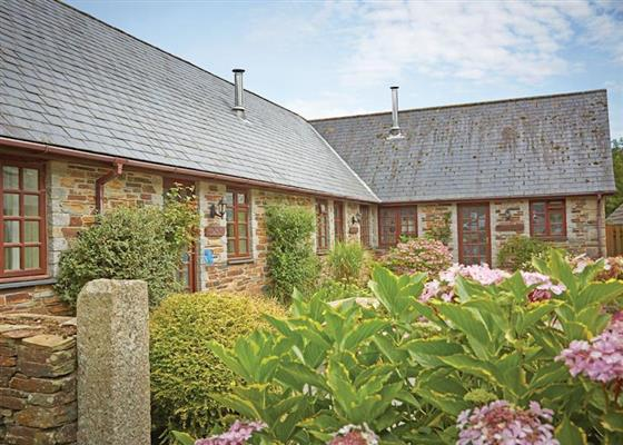 Bracken at Hengar Cottages, Bodmin