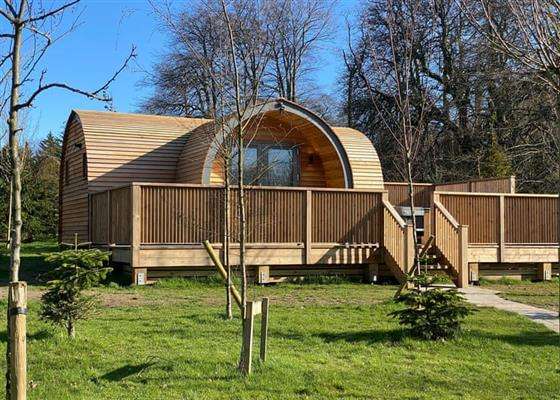 Caban Ceirw at Henlle Hall Woodland Lodges, Oswestry