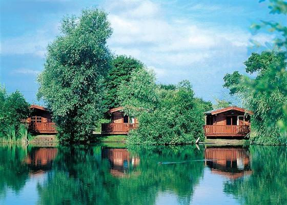 Cedar Deluxe Lodge