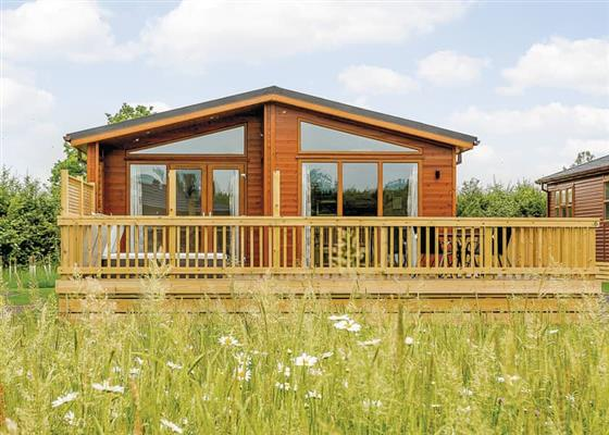 Country Lodge Four VIP Gold at Brokerswood Holiday Park, Westbury