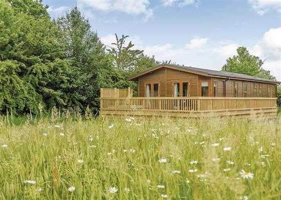 Country Lodge Six Gold at Brokerswood Holiday Park, Westbury