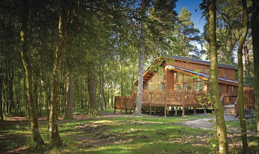 Cropton Lodges