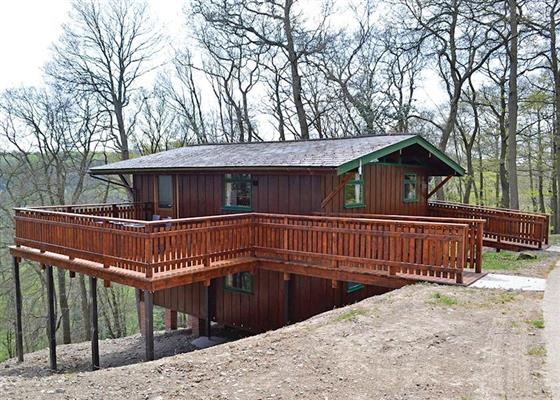 Crow's Nest at Penllwyn Lodges, Montgomery