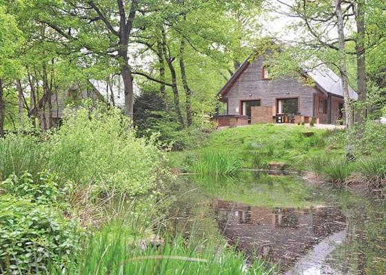 Denstone at Ramshorn Estate Woodland Lodges, Stoke-on-Trent