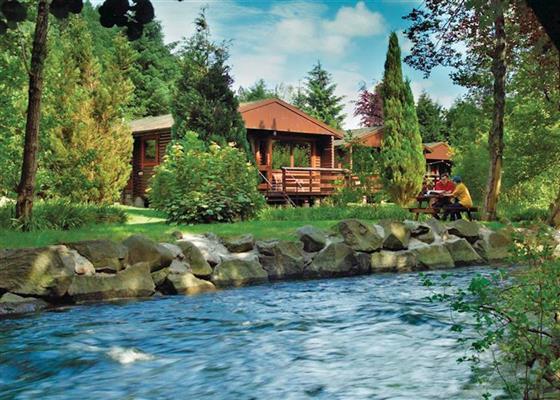 Earn Lodge VIP at Riverside Log Cabins, Crieff