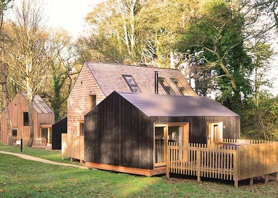Forest Lodge 3 at Burnbake Forest Lodges, Wareham