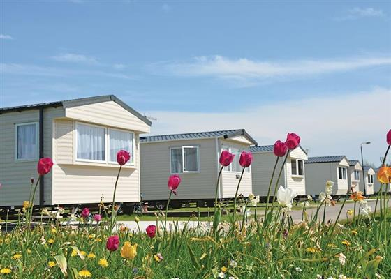 Glendun 2 Caravan Gold at Causeway Coast Holiday Park, Ballycastle
