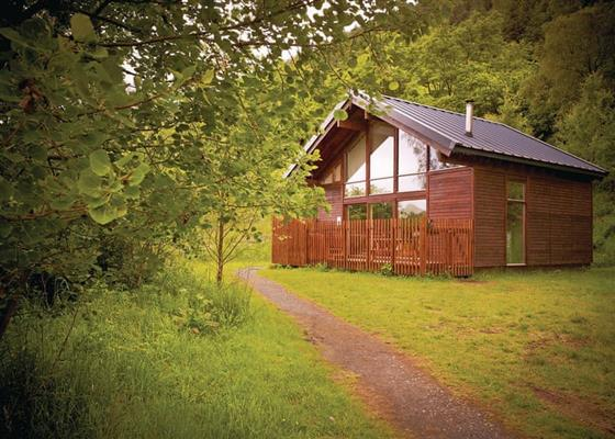Golden Oak 3 (Pet) at Strathyre Lodges, Callander