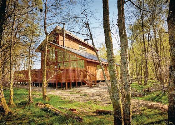 Golden Oak 4 at Strathyre Lodges, Callander