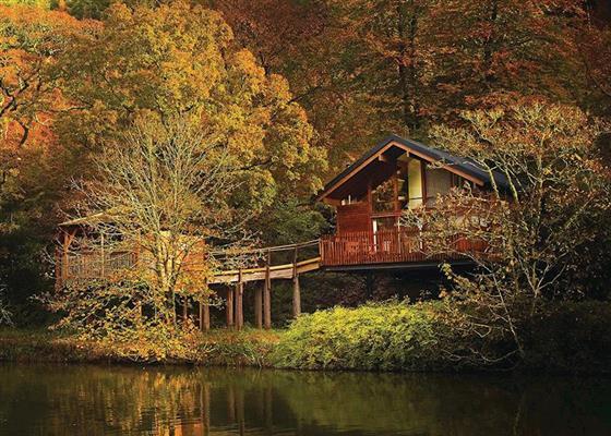 Golden Oak Waterside 2 at Deerpark Forest, Liskeard