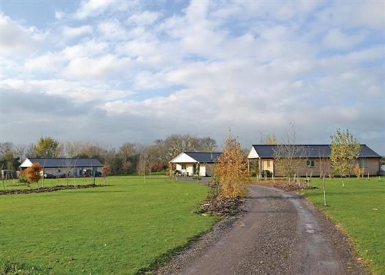 Hedgehog Lodge at Little Moorland Farm Lodges, Axbridge