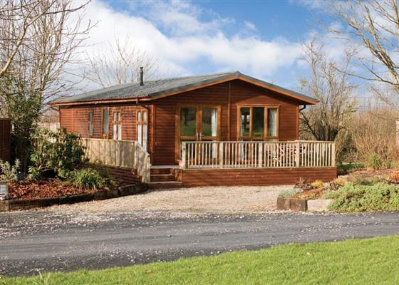 Hornbeam Lodge 2 at Herons Brook Retreat Lodges, Narberth