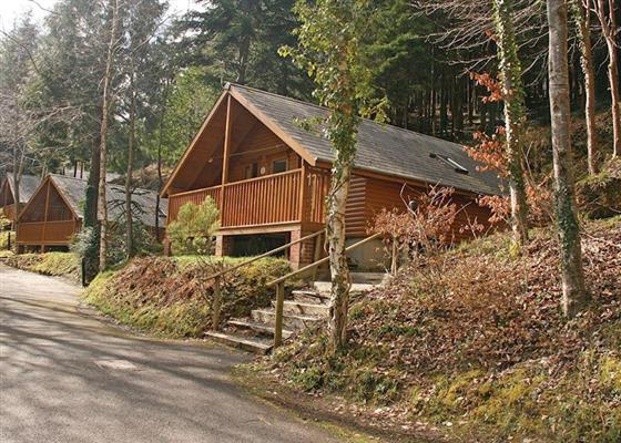 Hunters Lodge at Bulworthy Forest Lodges, Bideford