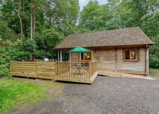 Hunters Lodge at Griffon Forest, York
