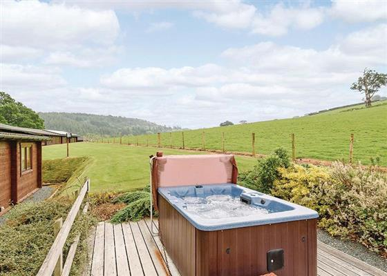 Jasmine Lodge at Trewythen Lodges, Llandinam