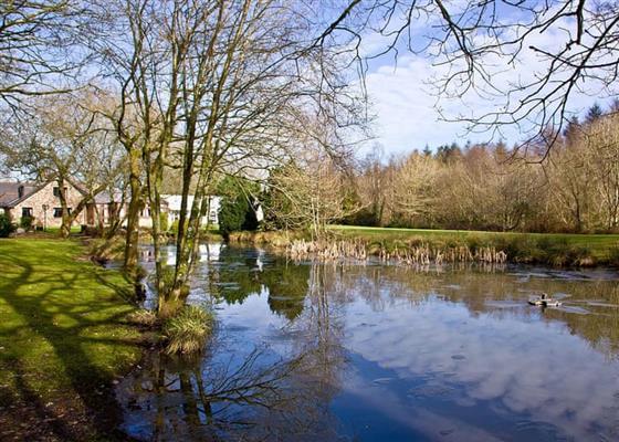 Kingfisher Lodge at Lakeview Manor Lodges, Honiton