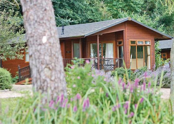 Leam Lodge Spa
